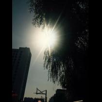 961021夕阳
